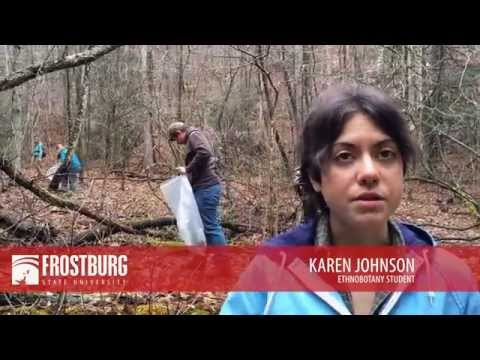 Frostburg biology students help endangered butterfly