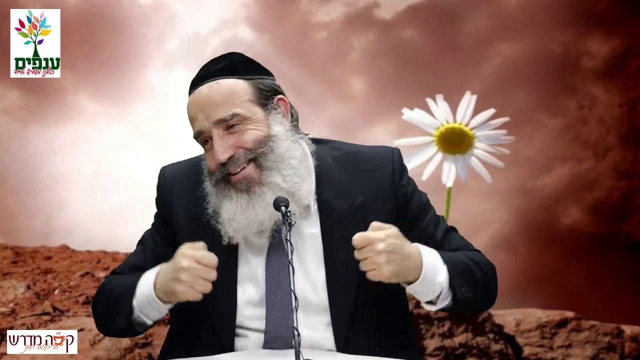 הרב יצחק פנגר   לפרוח גם במדבר HD   שידור חי