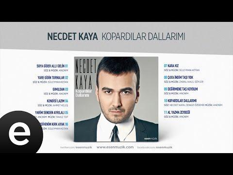 Yare Gidin Turnalar (Necdet Kaya) Official Audio #yaregidinturnalar #necdetkaya - Esen Müzik