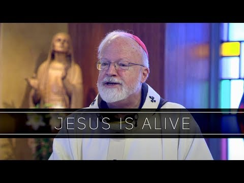 Jesus Is Alive | Homily: Cardinal Seán O'Malley