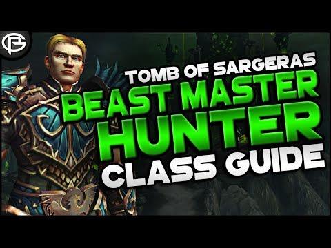 7.2.5 Basic Guides // Hunter - Beast Master