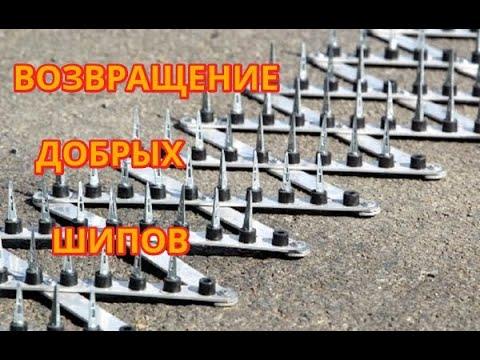 Вектор Движения №215 Возвращение Добрых Шипов!