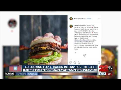 AJ - Best Job Ever?  Bacon Tester Applications Being Accepted