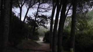 Camping Sa Prama Camping Sa Prama Cala Liberotto