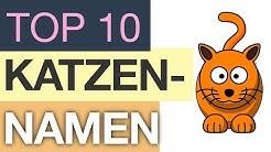Top 10 Katzennamen