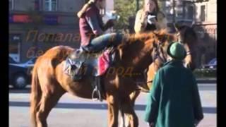 Лошади... очень трогательное видео об одной лошади