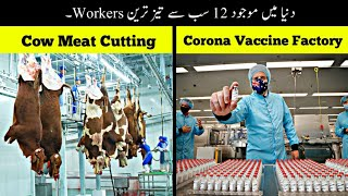 12 Most Fastest Workers In The World   دنیا کے سب سے تیز ترین ورکرز   Haider Tv