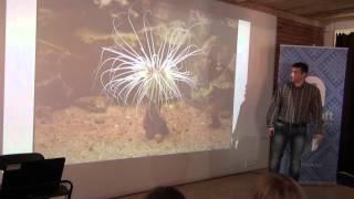видео Ландшафтный дизайн в России: история возникновения и особенности развития