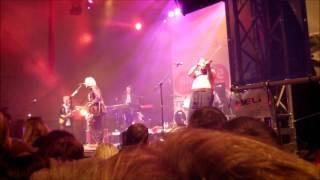 Bob Geldof - Live In Concert