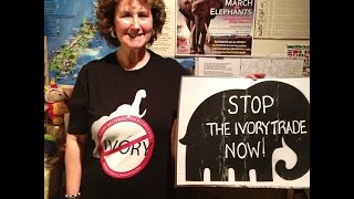 New Zealanders Push For Ban On Ivory