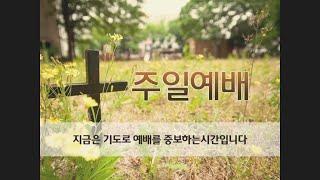 022320 IKUMC 주일 예배 🥰 하나님은 신실하십니다 (출1:1-7) 권성철 담임목사님