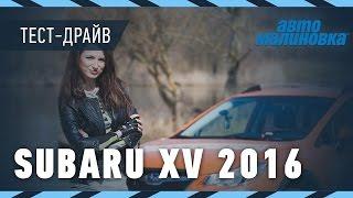 Subaru XV 2016 - обзор от Автомалиновки