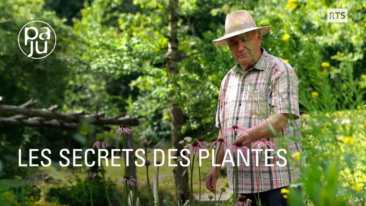 Un reportage-hommage au métier d'herboriste, à voir...