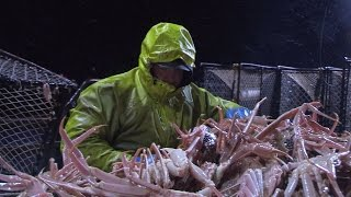 Can Jake Anderson Find the Missing Crab? | Deadliest Catch