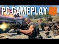 Blackout PC GAMEPLAY! (1080Ti Max Settings)
