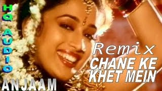 Chane Ke Khet REMIX Song - Anjaam Feat Madhuri Dixit