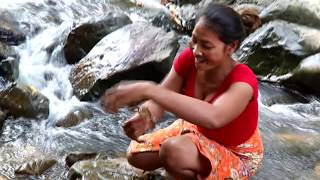 Survival skills: Catch fish by hand & Grilled fish for food - Cooking fish eating delicious #31