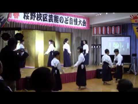 【動画】平成30年 桜野芸能祭 武術演武