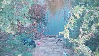 Fishing at Haleji Lake, Thatta, Sindh