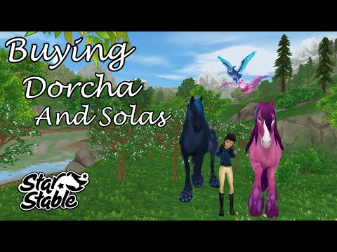 Buying Dorcha, Solas and there flying friends || Star Stable Online