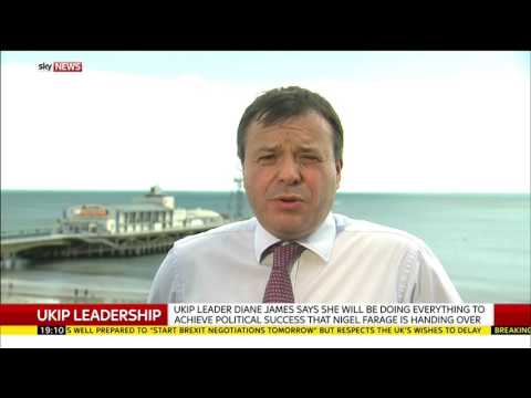 UKIP donor Arron Banks on the party's new leader