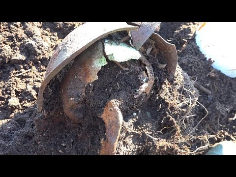 Found soldier with a submachine gun in his hands, excavations on the fields of the Leningrad Front from YouTube · Duration:  20 minutes