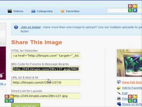 Tinypic Tutorial To Upload Images To Forum