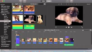 How to Capture a Still Image within iMovie and Save It to Your Desktop