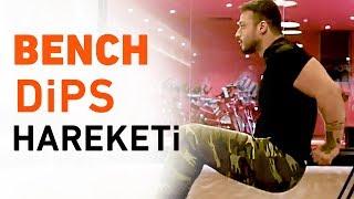 Bench Dips Hareketi Nasıl Yapılır? | Fitness Hareketleri #2