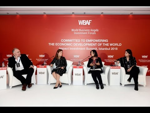 WBAF 2018 Panel: Global perspectives of impact investing and triple bottom line