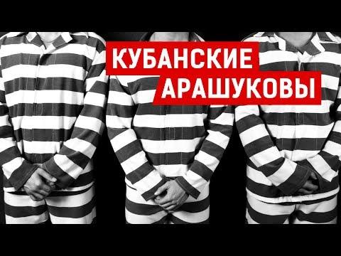КУБАНСКИЕ АРАШУКОВЫ   Аналитика Юга России