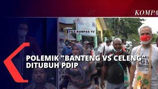 Polemik Banteng vs Celeng di Tubuh PDIP