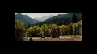 Darling Companion - Official Trailer (2012) [HD] -.mp4