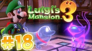 Luigi's Mansion 3 Gameplay !! Walkthrough # 18 Hunting Polterkitty Again!? ᴴᴰ