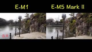 OMD E-M5 Mark2 vs E-M1