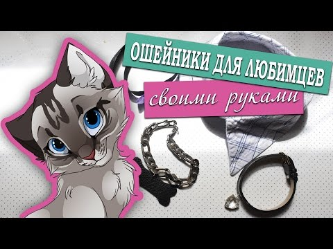Вопрос: Зачем на кошачьих ошейниках бубенцы?