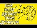 Как твой мозг обманывает тебя делая жизнь хуже Почему мозг враг мой и как мозг обманывает нас mp3