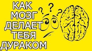 Как твой мозг обманывает тебя мешая стать лучше - Почему мозг враг мой и как мозг обманывает нас