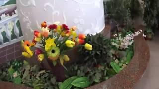 Столовая и Питание в Санатории Озерный Беларусь 2018