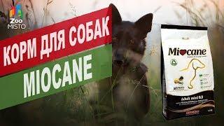 Корм для собак Миокане | Обзор Корма для собак Миокане