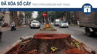 Đã xóa sổ cây trên tuyến đường đẹp nhất TPHCM | VTC1