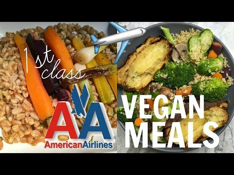 American Airlines 1st Class VEGAN MEALS // WHAT I EAT IN A DAY TRAVELING FROM ITALY To LA