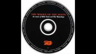 07 THE WATERBOYS   SHE IS SO BEAUTIFUL THE WHOLE OF THE MOON