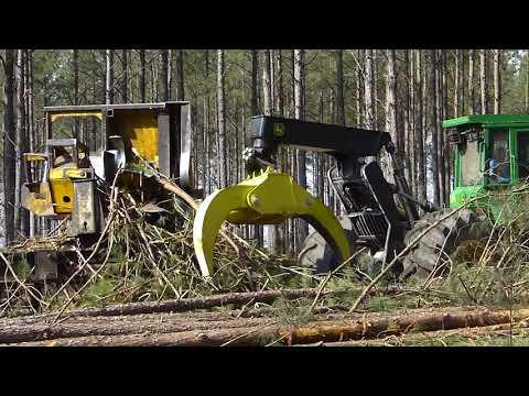 Logging In Georgia Pt 2