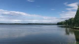 Озеро Белое. Шатурский район, Московская область.