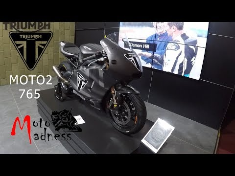 Triumph Daytona  -  (Moto) First look walkaround
