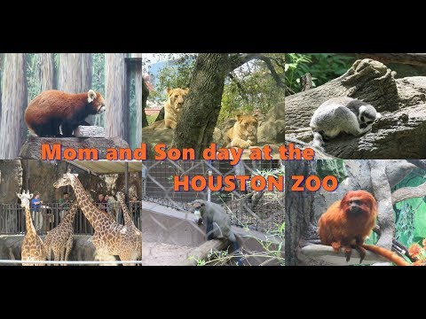 #78 MOM AND SON DAY 2018 - AT THE HOUSTON ZOO!!! (with detailed animal names)