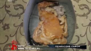 Женщина накормила ребенка смесью с личинками