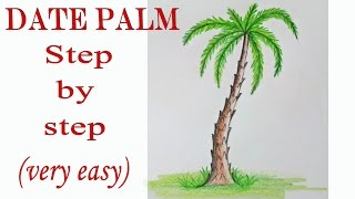 How to draw a date palm step by step (very easy)