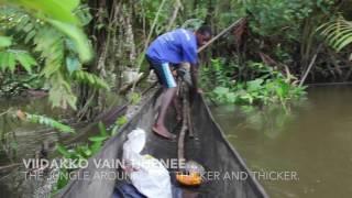 Boar hunting in Papua New Guinea